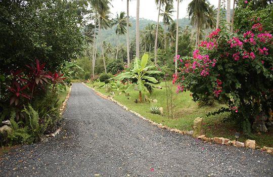 Big Trees Village Eco Friendly Resort Lamai Beach
